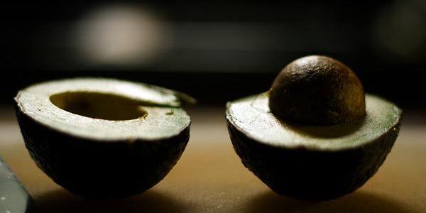 Инструкция по выращиванию авокадо