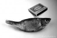 Рыба размера M